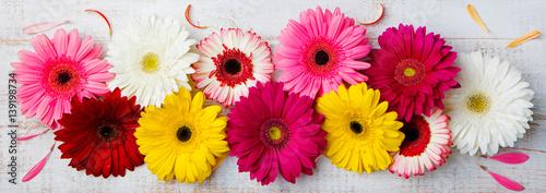 Fotografie, Obraz Colorful gerbera flowers on white wooden background