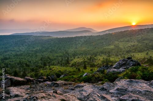 Vászonkép Scenic sunset, Grayson Highlands, Appalachian Trail, Virginia
