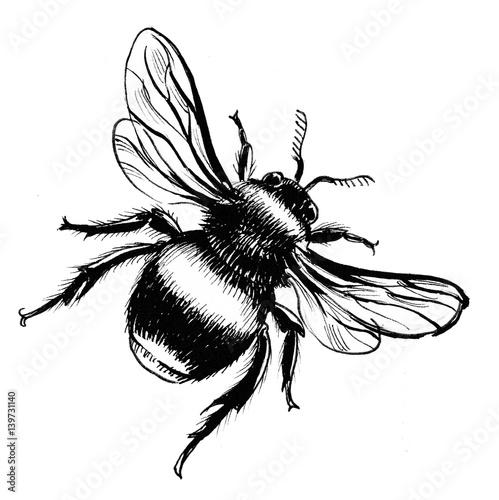 Wallpaper Mural Big bumblebee