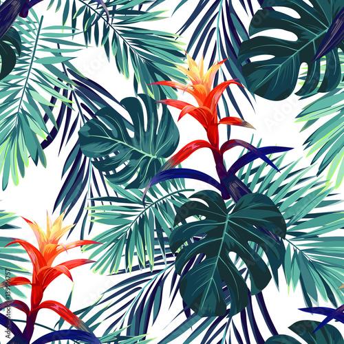 Fototapeta Ręcznie rysowany wzór - kwiaty guzmania, monstera i liście palmowe na białym tle