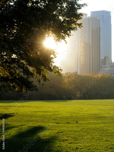Fotografia Central Park Panorama at sunny day, New York