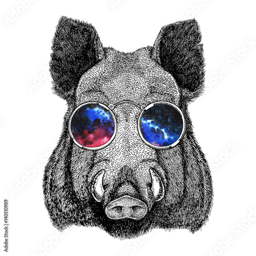 Fotografía Cool boar picture for beer branding, food branding, posters Fashionable Image fo