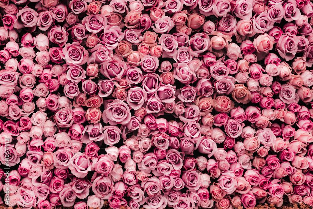 kwiaty tle ściany z niesamowitych róż <span>plik: #140571112 | autor: joeycheung</span>