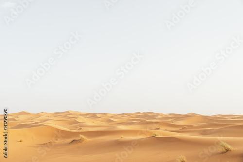 Billede på lærred Gold desert in sunset.