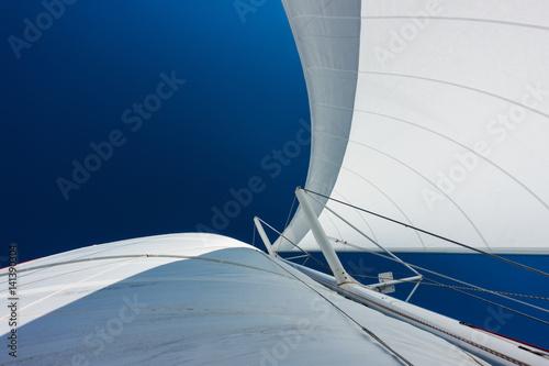 Leinwand Poster Sailing yacht catamaran sailing in the sea. Sailboat. Sailing.