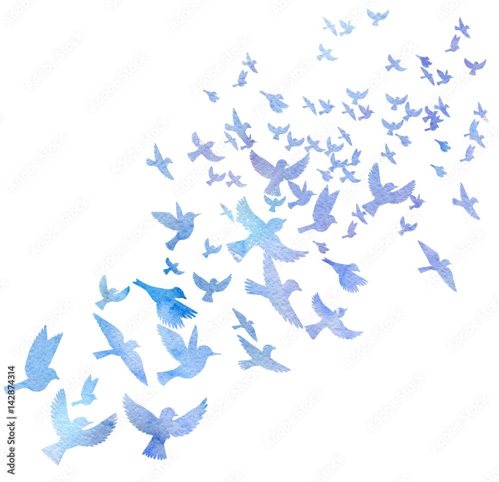 watercolor flying birds silhouettes <span>plik: #142874314   autor: cat_arch_angel</span>
