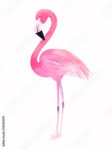 Obraz na plátne Watercolor pink flamingo. Vector illustration