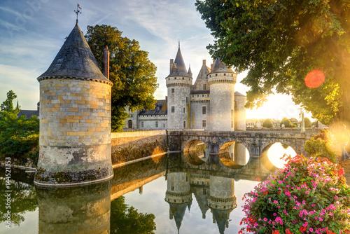 Vászonkép Chateau of Sully-sur-Loire at sunset, France
