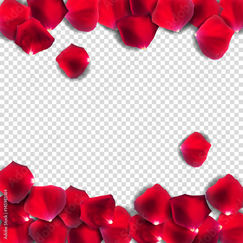 Valokuvatapetti Abstract Natural Rose Petals on Transparent Background Realistic