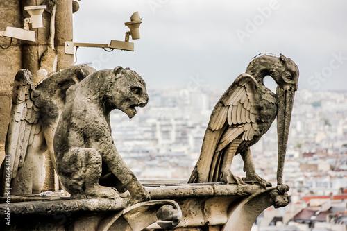 Mythical creature gargoyle on Notre Dame de Paris Fototapeta