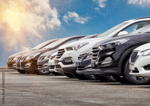 Cars For Sale Stock Lot Row Fototapeta