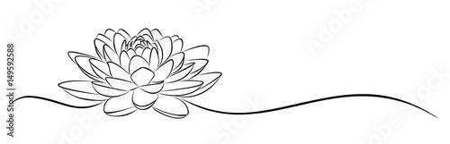 Fotografia lotus Sketch.