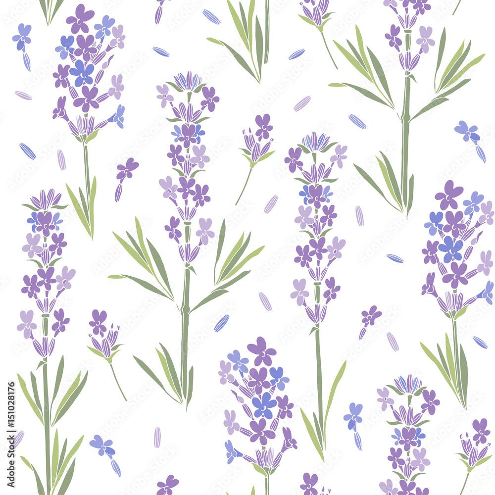 Bezszwowy wektoru wzór z lawendowymi kwiatami. Kwiecista ilustracja na białym tle. <span>plik: #151028176 | autor: maritime_m</span>