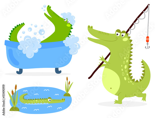Fototapeta premium Cartoon green crocodile funny predator australian wildlife river reptile alligator flat vector illustration.