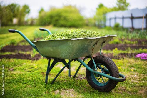 Photo Closeup vintage wheelbarrow full of grass at green summer garden background