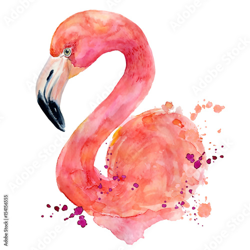 Wallpaper Mural watercolor pink flamingo