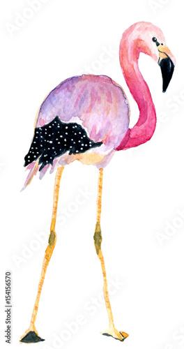 Wallpaper Mural watercolor pink flamingos