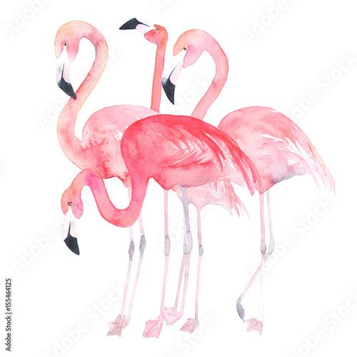 Canvas Print Watercolor flamingos