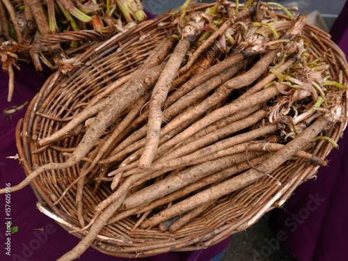 Basket of Burdock Rock Tapéta, Fotótapéta