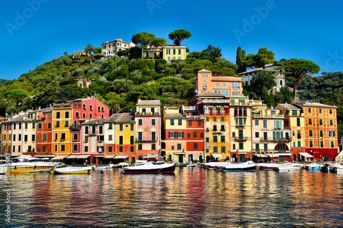 Obraz na plátně Colorful buildings of Portofino reflecting on the harbor