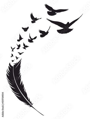 Latający ptak z piór.