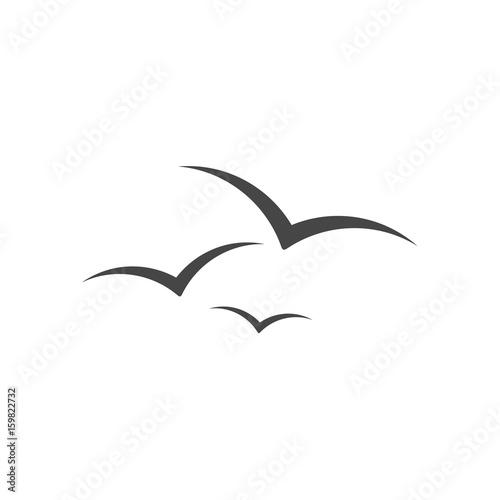 Canvas Print Seagull vector illustration