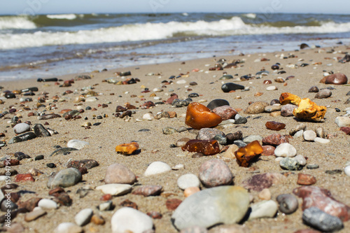 Some pieces of amber found on the Baltic seashore Fototapeta