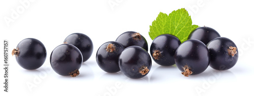 Currant berry with leaf