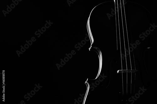 Canvas Violin classical music instrument close-up