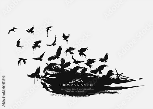 Canvas Print Brushstroke texture grunge with birds flying