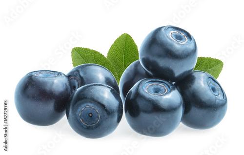 Slika na platnu Blueberries (bilberries) isolated on white background