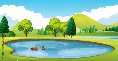 Obraz na plátně Scene with pond in the field