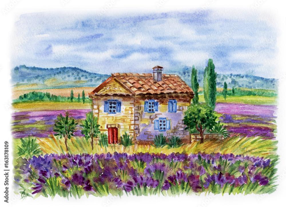 Krajobraz z domem i lawendowymi polami przeciw tłu góry. Ilustracja akwarela w stylu Prowansji. <span>plik: #163178109   autor: Ollga P</span>