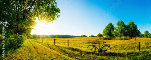 Landschaft im Sommer mit Bäumen und Wiesen bei strahlendem Sonnenschein