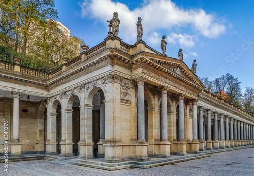 Carta da parati Mill Colonnade, Karlovy Vary