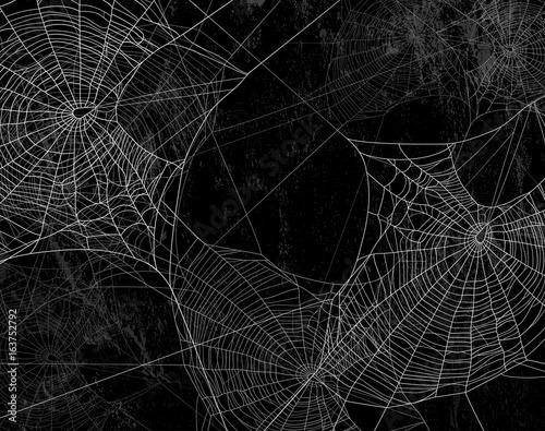 Fotografie, Obraz Spider web silhouette against black wall - halloween theme dark background