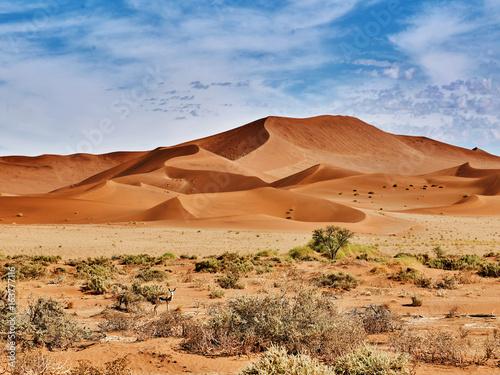Fotografija desert of namib with orange dunes