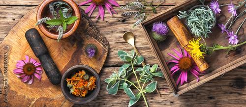 Canvastavla set healthy herbs