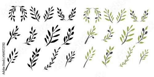 Olive brunch set. Digital illustration Fototapeta