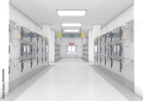 Stampa su Tela A look down the aisle of fridges in a clean white ward in a mortuary - 3D render