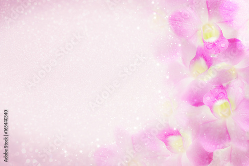 Canvas Print sweet purple orchid flower frame blooming in soft background with bokeh and glit