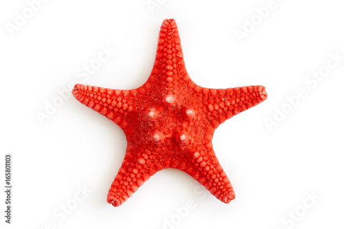 Fototapeta Dried red sea starfish isolated on white background. Top view