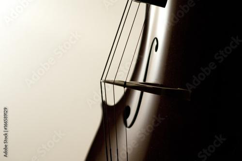 Cello strings close-up Fototapeta