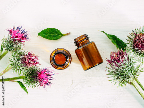 Obraz na płótnie burdock oil in small glass bottle and burdock flowers on white wooden table