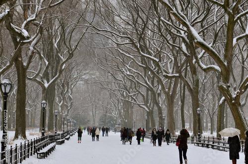 Leinwand Poster Snowy park