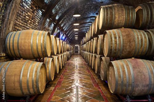 Canvas Print Wine cellar with of oak barrels