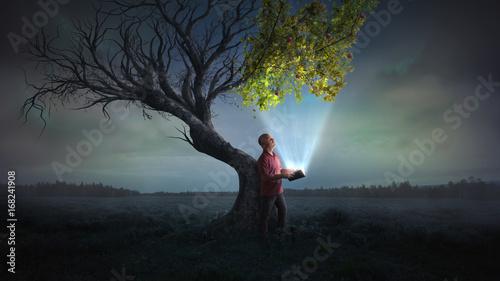 Obraz na plátne Bringing life to a tree