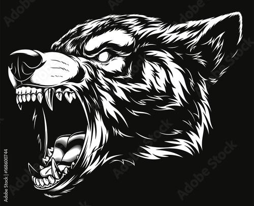 Fototapeta premium Głowa dzikiego wilka