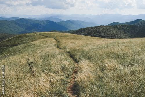 Appalachian Trail passing through Max Patch, North Carolina Tapéta, Fotótapéta