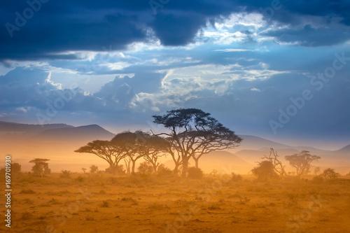 Photo African Savannah. The foot of Mount Kilimanjaro.
